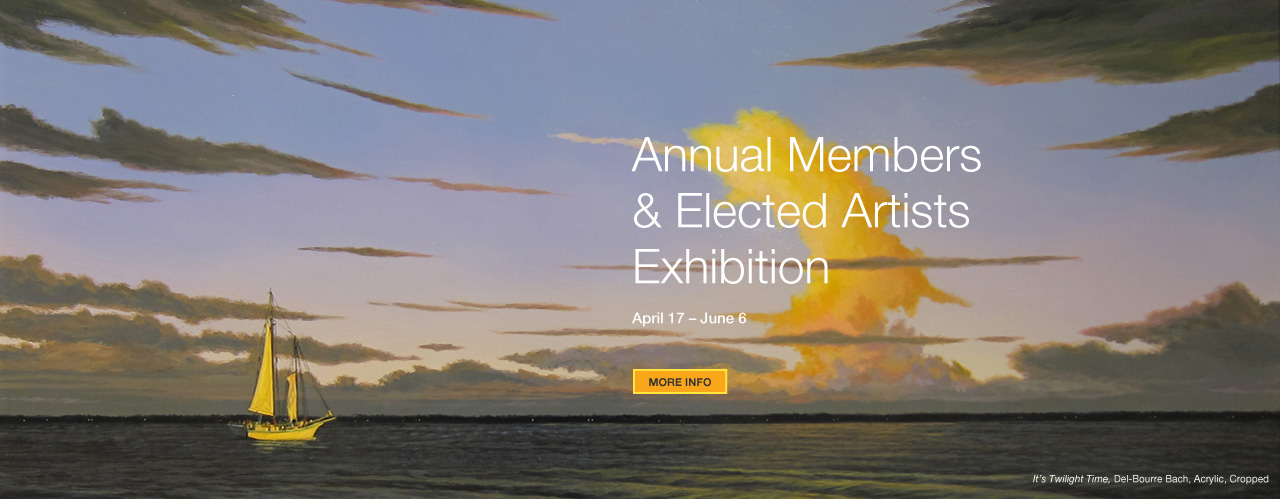 Annual Members & Elected Artists Exhibition 2015